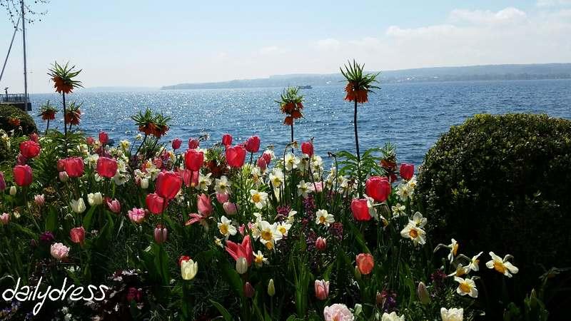 Blumen an der Promenade